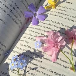 Book flowers.webp