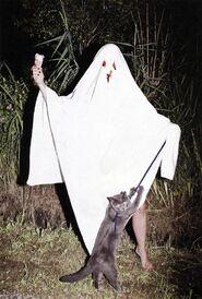 Ghost-sheet