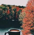 Autumn VSCO 4