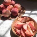 Fruit Aesthetic