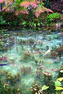 Seaflora