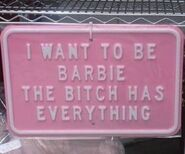 Barbiehaseverything