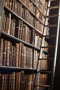 Dark Academia-Bookself and Ladder