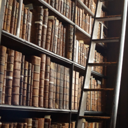 Dark Academia-Bookself and Ladder.webp