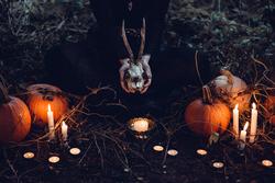 Halloween Skull and Pumpkins.webp