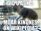 DID U ASK 4 MOAR KINDESS ON WIKIPEDIA