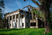 0a77f05b-c0ad-479d-a9c0-a69e35f21f0a-abandoned-homes-america-dicksonia-plantation-alabama-3