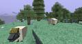 Kirrid Herd.png