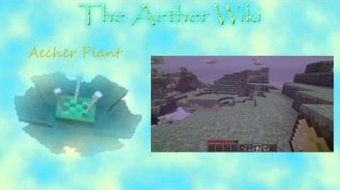 The Aether Wiki - Episode 3 - Aechor Plants