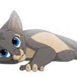 Flèche de Nuit's avatar