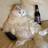 ColdWhie's avatar