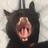 Medlols's avatar