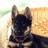 JustPower's avatar