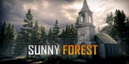 Sunny-forest-mini