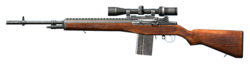 M14 modified small.png