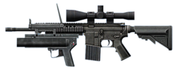 SIG716 modified small.png