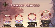 Phoenix Frames