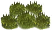 Forest Cell 1