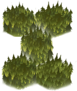 Forest Cell 2