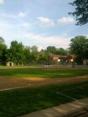Dice baseball field.jpg
