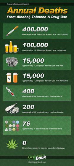 Drug deaths.jpg
