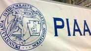 PIAA-logo-on-banner