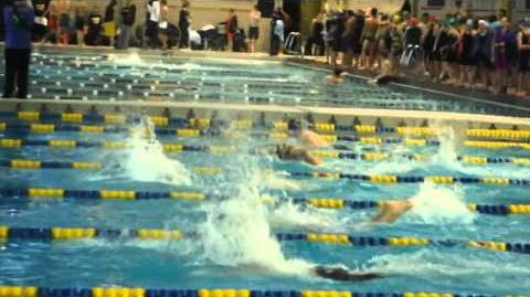 Sead swims to gold in WPIAL class AA in 100 fly, 51.29