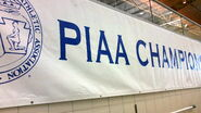 PIAA banner