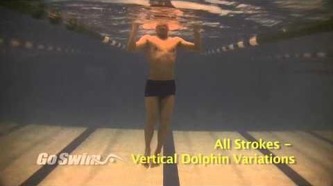 All_Strokes_-_Vertical_Dolphin_Variations