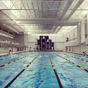 WVU-pool-LC-with-dive-well-behind.jpg