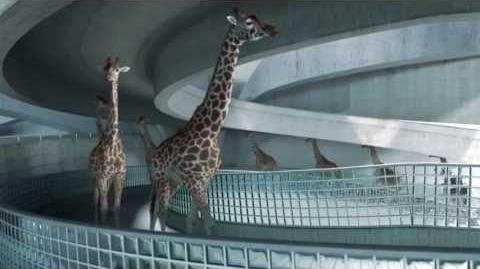 High_Diving_Giraffes