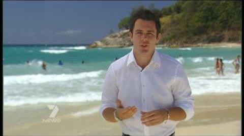 Shark attacks shark queensland australia