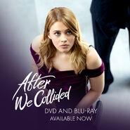 AWC DVD Promo3