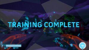 Training Complete