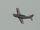 T-7 in flying the Shizuhama AB.jpg