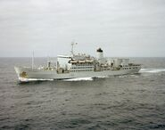 RFA Fort Rosalie (A385)