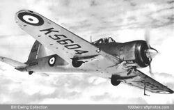 Gloster Goshawk.jpg