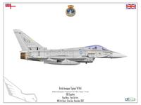 Eurofighter Typhoon (No. 899 Squadron - HMS Ark Royal (R09)).png