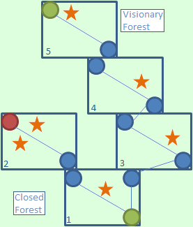 Closed Forest.png