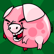 Pet balls pig hi