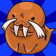 Pet balls walrus hi