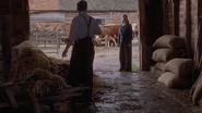 Rowley and Lynn at Long Willows farm