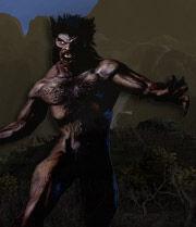 Werewolf web-1-.jpg