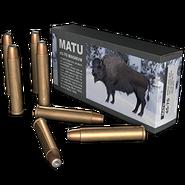 Ammo 45 70 mag