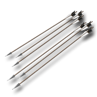Arrows longbow 01.png
