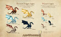 Art Dragons