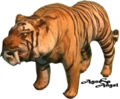 Tiger ( from screenshot) by AgnessAngel