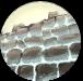 Regenerate Walls