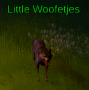 Little Woofetjes.png