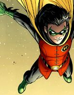 Robin (13)